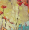 poppies jill van sickle